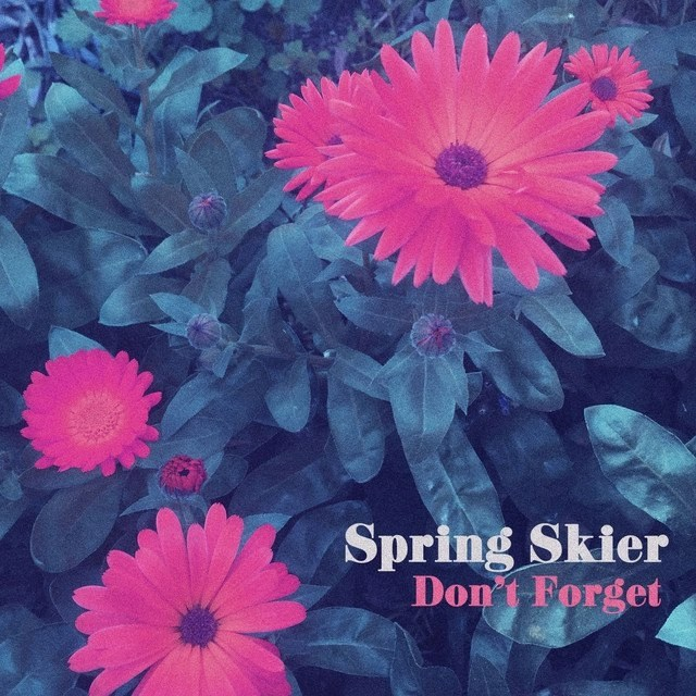 Spring Skier - Don't Forget