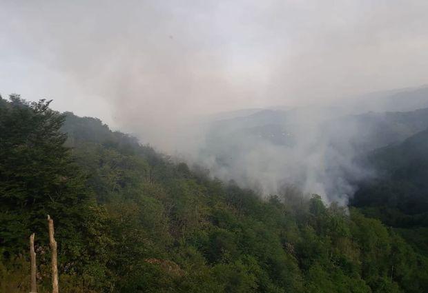 Ünye-Fatsa Arasında Orman Yangını