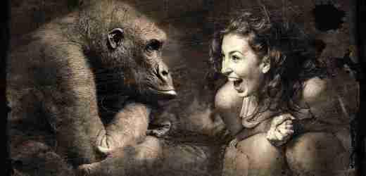沒眼看!廣西這家動物園要逆天 畫風清奇笑哭網友(組圖)