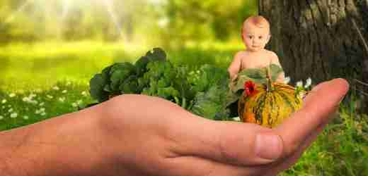 蔬果成精 農民心驚 不得不看又不能再看的⋯⋯(組圖)