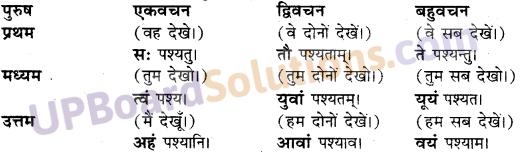 Sanskrit Anuvad UP Board Solutions Class 10 Hindi
