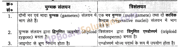 पादप जीवन चक्र UP Board Solutions For Class 11 Biology Chapter 3