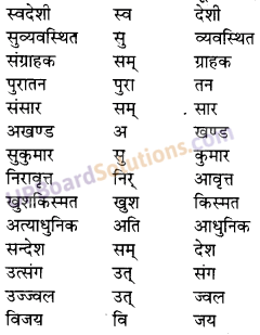 UP Board Solutions for Class 10 Hindi उपसर्ग img-10