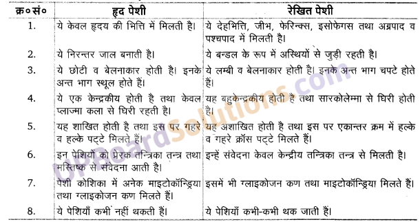 UP Board Solutions for Class 11 Biology Chapter 7 Structural Organisation in Animals image 12