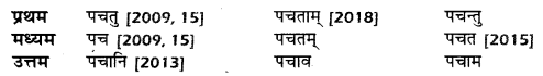 UP Board Solutions for Class 10 Hindi धातु-रूप img-16