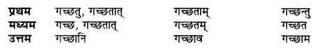 UP Board Solutions for Class 10 Hindi धातु-रूप img-6
