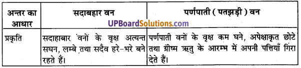 UP Board Solutions for Class 11 Geography Indian Physical Environment Chapter 5 Natural Vegetation(प्राकृतिक वनस्पति) img 1