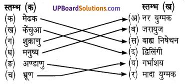 UP Board Class 8 Science Chapter 7 जन्तुओं में जनन