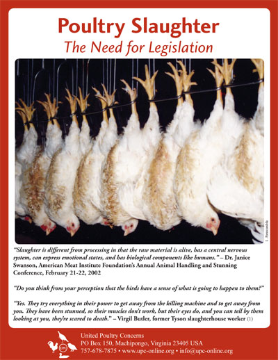 Poultry Slaughter  United Poultry Concerns