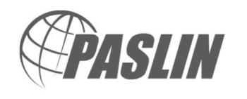Paslin logo