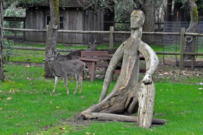 Driftwood Yard Art  Upcycle Art