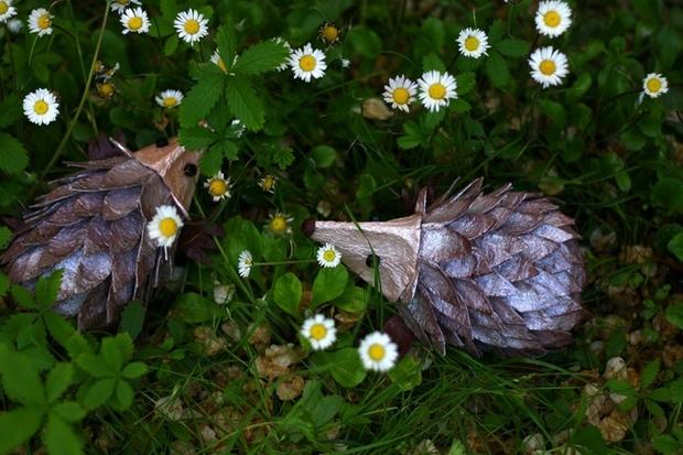 Pascua Ideas cartón de huevos reutilizan niños artesanía hedgehog hierba