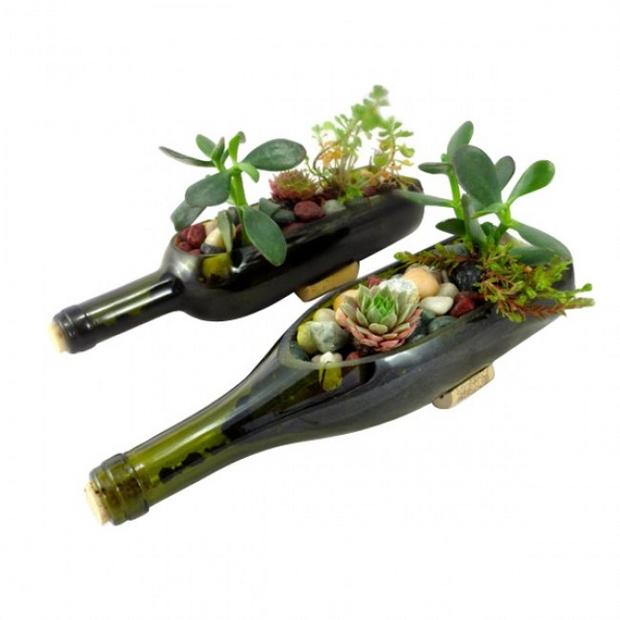 la reutilización de botellas de vidrio de flores suculentas plantador mini jardín decoración bricolaje Ideas