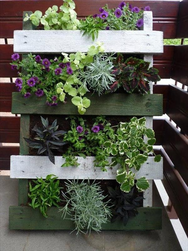 Wooden Vegetable Planters