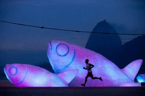 plastic bottle fish sculptures at night
