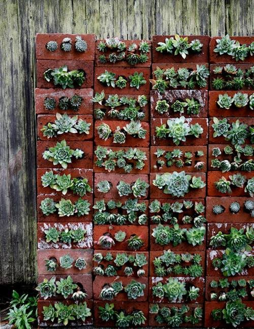 Succulent Brick Wall | Upcycle That