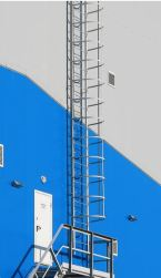 a fixed ladder safety
