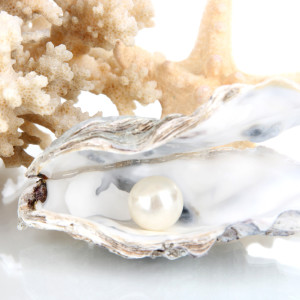 Oyster & Pearl
