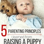 5 Parenting Principles I Learned from Raising a Puppy
