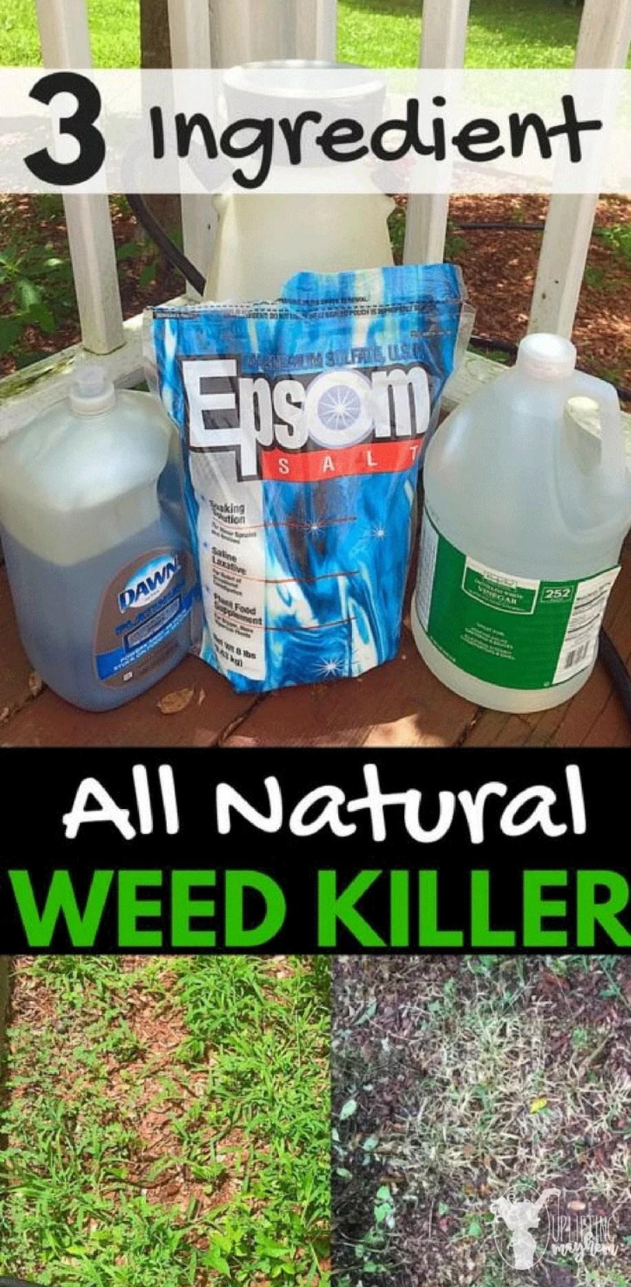 3 ingredient natural weed killer homemade recipe
