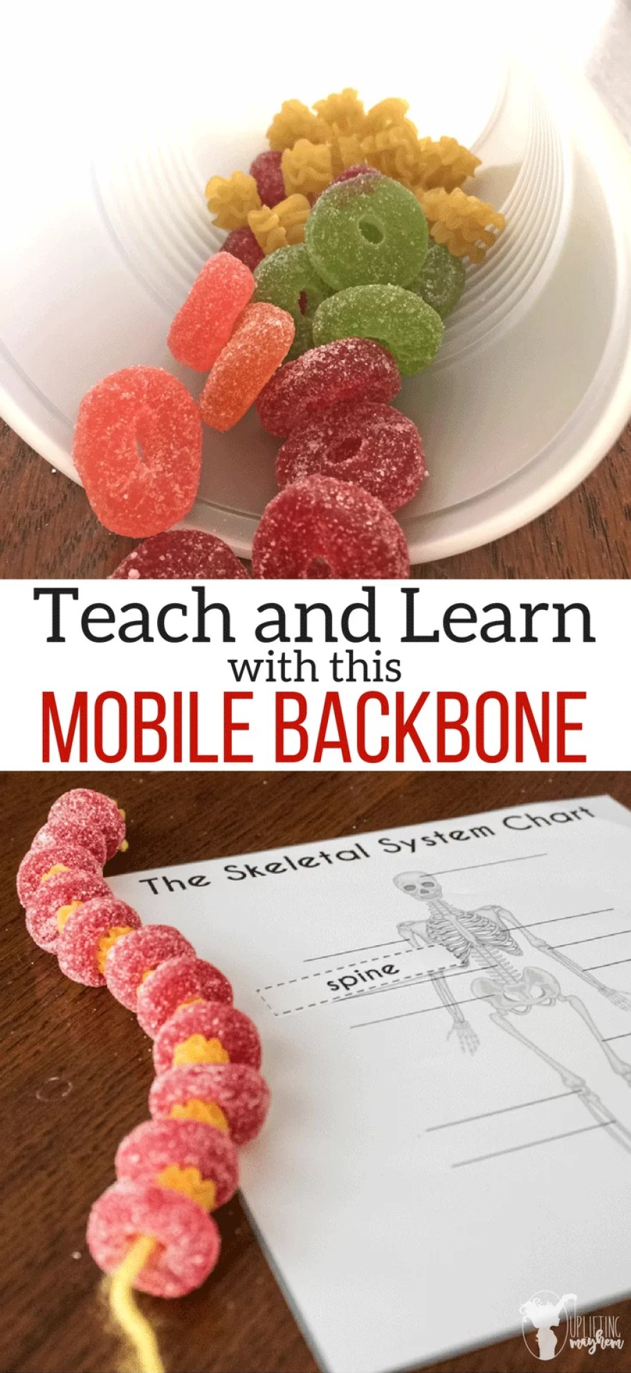 DIY MOBILE BACKBONE