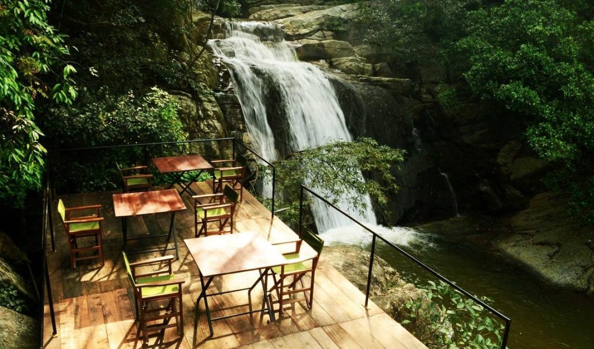 jungle_restaurant_srilanka