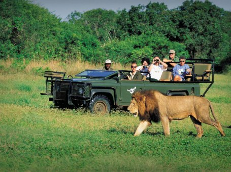 Safari Tours in Sri Lanka