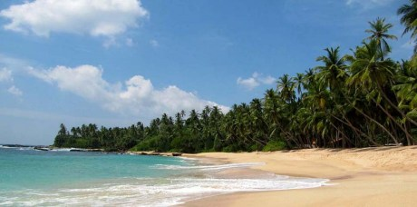 5 Amazing Beaches In Sri Lanka Especially For Foreigners