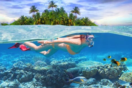 I'd Rather Be Snorkeling