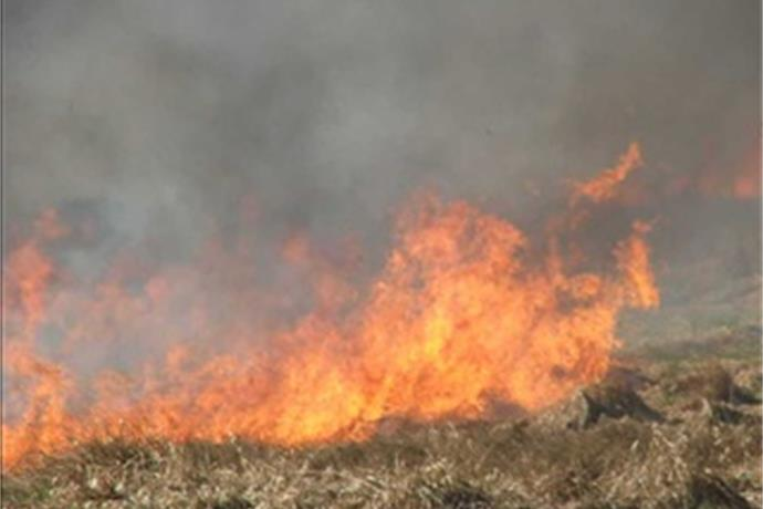 Burn Ban Lifted for Outagamie County_7532953992693763783