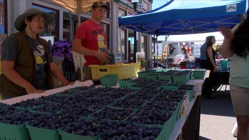 Blueberry Festival takes over Downtown Marquette_51026156