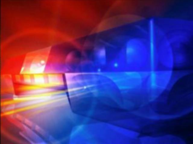 Seven people arrested in drug bust