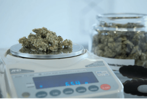 getting the right kratom dose on weighing scale