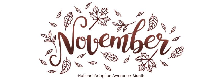 November is Adoption Awareness Month | Respectful Adoption Language
