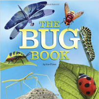 The Ultimate Gift Guide for Bug Loving Kids