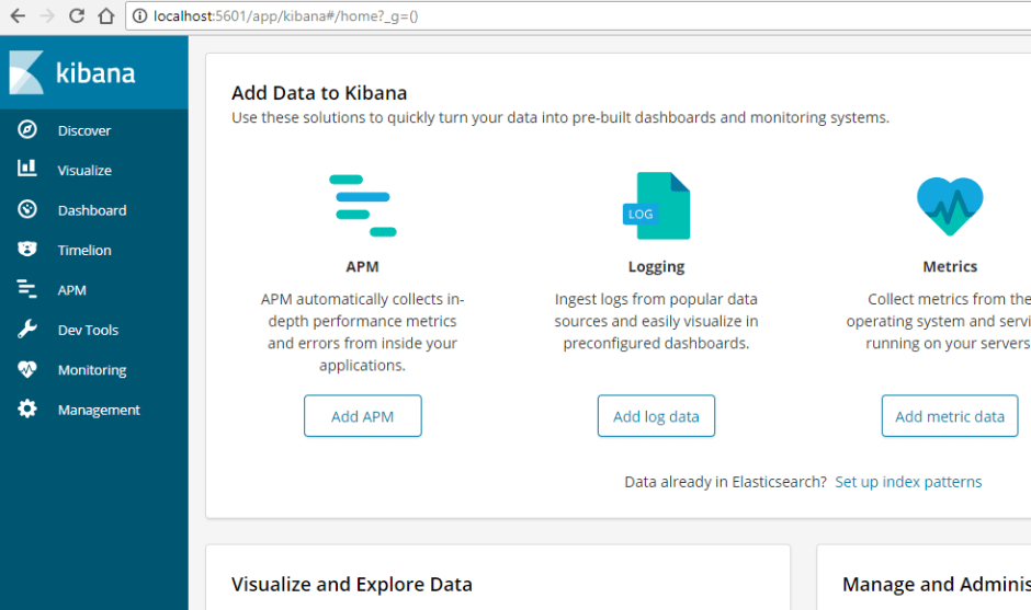 Kibana application