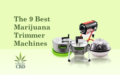 The 9 Best Marijuana Trimmer Machine: Choose the Right one!