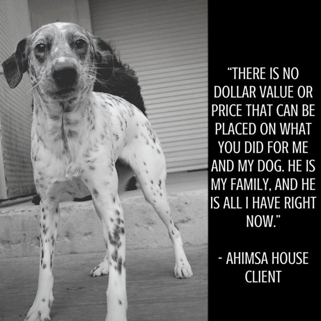 Ahimsa house client testimonial
