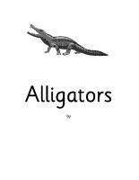 Animals- alligators