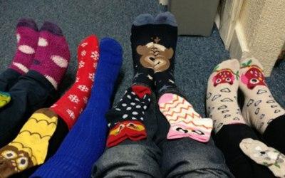 HIGOS Lots of Socks