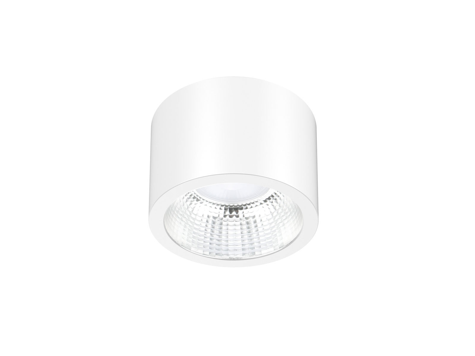 Dl115 White Waterproof Ceiling Mounted Downlight