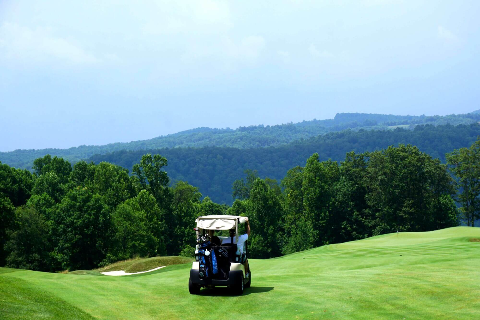 golf cart insurance root cause analysis tree diagram cheap sc and atv coverage in greenville