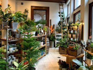 River Garden Studio