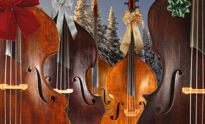 Forest Scene of Double Basses