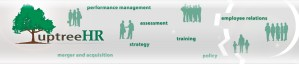 uptreehr - human resources consultant located in halifax, nova scotia