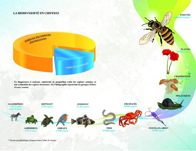 http://www.docsciences.fr/IMG/jpg/bio01b_vignette_ok.jpg
