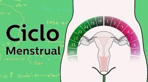 Sangrar en abundancia durante el ciclo menstrual puede causar anemia