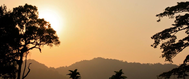 Bakon kansallispuistosta löytyy pala Borneon koskematonta luontoa