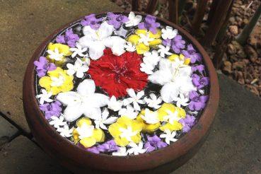 kukat malesia