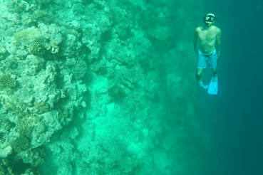 snorklaus malediivit